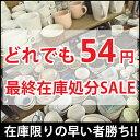 どれでも54円!? 最終在庫処分SALE