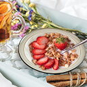 オートミールボウル 19.8cm クラシックボウル アウトレット込 洋食器 日本製 美濃焼 陶器 深皿 ミニパスタ ミニカレー皿 サラダ皿 プレート ボーダー おしゃれ 家カフェ レトロ ビンテージ アンティーク風 スープ皿 オートミール