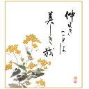 色紙絵 実篤名句 【菜の花】 恵風 [K5-029A]【代引き不可】