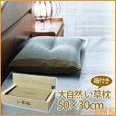 【IKE】【TD】大自然 い草枕(箱付き) 50×30cm【イケヒコ】