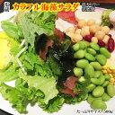 海藻屋さんの海藻サラダ500g/10P03Dec16...