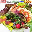 海藻サラダJAPAN100g【国産】業務用サイズお得品  10P06Aug16/人気サラダ/カロリー