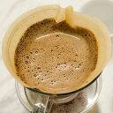 ●●ニットク COFFEE FILTER コーヒーフィルター 2〜4人用(未晒しタイプ) 100枚入り 珈琲 パルプ コーヒー coffee filter 5500円以上 送料無料