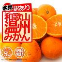 みかん 5kg 訳あり ご家庭用 和歌山県産 産地直送 無選...