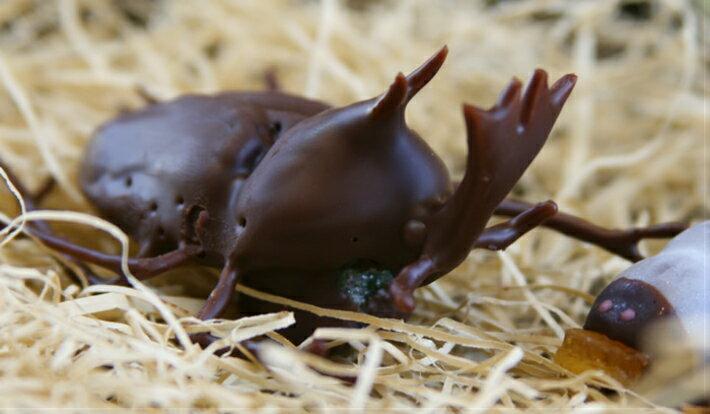 超リアル!かぶと虫の成虫チョコレート♪【冷蔵発送...の商品画像