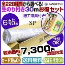 サンゲツ SP【お買い得セット】【数量限定】のり付き 壁紙 クロス 30m