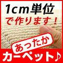 Img10024007965
