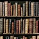 輸入壁紙の切り売り(幅53cm×1m単位で切売)KOZIEL コジエル Bibliotheque  8888-13