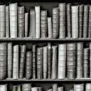 輸入壁紙の切り売り(幅53cm×1m単位で切売)KOZIEL コジエル Bibliotheque  8888-57