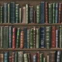 輸入壁紙の切り売り(幅53cm×1m単位で切売)KOZIEL コジエル Bibliotheque  8888-562
