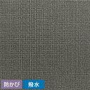 生のりつき 壁紙 (クロス)30mパック/東リ VS SVS-8047 織物調 壁紙屋本舗