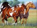 馬 ウマ 動物の壁紙 輸入 カスタム壁紙 PHOTOWALL / High Spirits (e312441) 貼ってはがせるフリース壁紙(不織布) 【海外取り寄せのため1カ月程度でお届け】 【代引き・後払い不可】