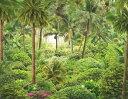 ジャングル 森 森林 ボタニカル 緑 グリーンの壁紙 輸入 カスタム壁紙 PHOTOWALL / Jungle Essay (e318662) 貼ってはがせるフリース壁紙(不織布) 【海外取り寄せのため1カ月程度でお届け】 【代引き不可】