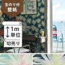 壁紙 のり付 クロス生のり付き壁紙/リリカラ Sea Side Story LL-8029、LL-8030(販売単位1m)しっかり貼れる生のりタイプ(原状回復できません)【今だけ10m以上でマスカープレゼント】
