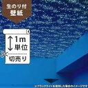 RoomClip商品情報 - 壁紙 のり付 クロス生のり付き壁紙/サンゲツ 蓄光 RE-2865(販売単位1m)しっかり貼れる生のりタイプ(原状回復できません)【今だけ10m以上でマスカープレゼント】