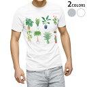 ショッピング観葉植物 tシャツ メンズ 半袖 ホワイト グレー デザイン XS S M L XL 2XL Tシャツ ティーシャツ T shirt 015924 観葉植物 植木鉢