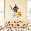 ウォールステッカー 飾り 60×60cm シール式 装飾 おしゃれ 壁紙 はがせる DIY プチリフォーム パーティー イベント ハロウィーン 賃貸 013835 ハロウィン 犬 動物