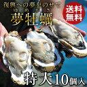 生牡蠣 殻付き 特大 夢牡蠣 10個【送料無料】生食用 生ガキ 大粒生牡蠣 特大