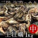 生牡蠣 殻付き 1kg 中 生食用宮城県産 漁師直送 格安生...