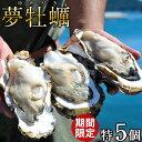 生牡蠣 殻付き 特大 夢牡蠣 5個生食用 生ガキ 大粒生牡蠣