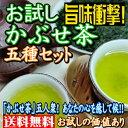 お試し 旨味衝撃! かぶせ茶五種セット (上かぶせ茶、かぶせ上芽茶、かりがね、玄米茶、ほうじ茶の5点セット) お茶 茶葉 日本茶 緑茶 美味しい 水出し 茶 おちゃ 旨味 香り 水色 リーフ 三重県 水沢 四日市 緑