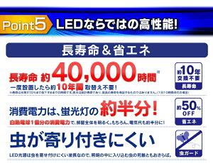 LED������饤��6����CL6D-5.0�����ꥹ�������3300lmĴ�������������ޡ�����̵��������饤�Ⱦ���ŷ�濷���褪��������ledŷ������饤���ŵ�������ʥ���[W��]��ͽ���
