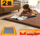 【あす楽】ホットカーペット 2畳 本体 176×176 TE...
