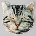 リアルタオル 眠り猫 ねこ・ネコ・猫・キャット・CAT・ねこ雑貨・タオル・ハンカチ