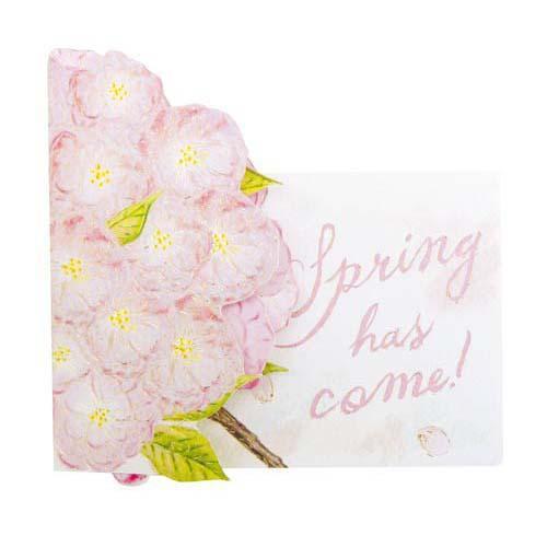 フラワーポップアップカード 八重桜桜・サクラ・さくらの紹介画像2