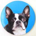 ★廃番★ポケットミラー フレンチブルドッグ[Catseye][犬グッズ 犬雑貨]犬 いぬ イヌ ドッグ DOG