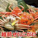 越前せいこがに C10ハイ【送料無料】福井県(名物)越前ガニ ずわい蟹...