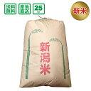 <新米>【令和2年産】新潟県産 こしいぶき 25kg(玄米)【送料無料(一部地域除く)】