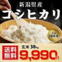 【送料無料】【平成28年産】新潟産 コシヒカリ 玄米 30kg 白米にもできます!【お中元 ・お歳暮にも!】