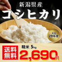 【送料無料】平成29年 新潟県産 コシヒカリ 5kg【お中元...