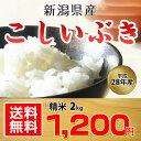 【平成28年産】【あす楽】新潟県産 こしいぶき 2kg【送料無料】