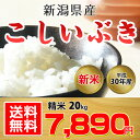 【送料無料】新潟県産 こしいぶき 20kg(精米)【平成30...