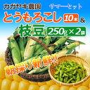 枝豆とトウモロコシに追われる日々を過ごしています。