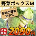 【送料無料】 産地直送 野菜セット Mサイズ【お歳暮・お中元...