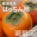 【送料無料】カガヤキ農園のはっちん柿 1段箱(13〜18個)【果物・ギフト・贈答用】