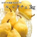 【予約受付開始】新潟の洋梨 ル・レクチェ3kg(9個前後)【冬ギフト】