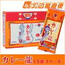 日の出製粉 カレーラーメン カレー龍 スパイシーカレー味 1ケース(15袋入)
