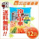 【送料無料】 五木食品 冷やし中華2人前×12袋セット 九州 熊本 五木食品