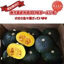 鹿児島産かぼちゃ