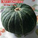 鹿児島産新味平(恵比寿)かぼちゃ