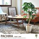 観葉植物 光触媒 造花 パキラ グリーン アートフラワー 人工 消臭 北欧 モダン %OFF 人工植