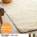 【ポイント10倍】 ラグ ラグマット 洗える 長方形 ふわふわ ホットカーペット対応 Fiorder フィオルダー じゅうたん シャギーラグ 絨毯[200cm×250cm]