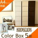 収納ボックス カラーボックス 扉付き 5段 CX-55FD 送料無料 アイリスオーヤマ 北欧 本
