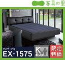 特価フレームウォーターベッドハードサイド キングサイズ(2バッグ)BODYTONE-EX1575 ※代