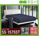 特価フレームウォーターベッドソフトサイド シングルサイズ(1バッグ)BODYTONE-SS1575ST
