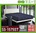 特価フレームウォーターベッドソフトサイド クイーンサイズ(2バッグ)BODYTONE-SS1575ST